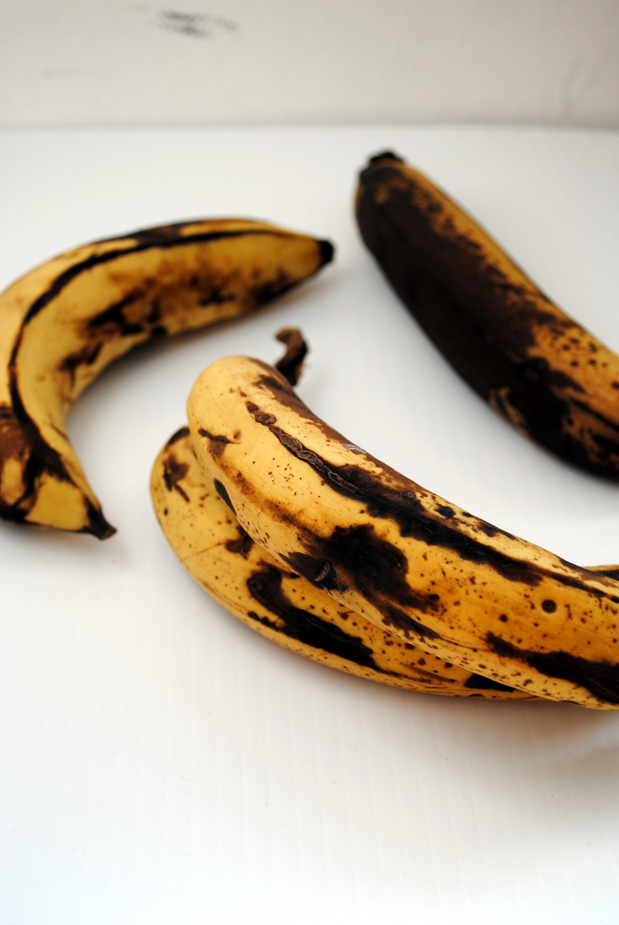 What Are Banana Plant Pups How To Separate Banana Tree: Over-Ripe Banana Heaven
