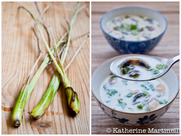 Tom Kha Hed (Thai Coconut and Mushroom Soup)